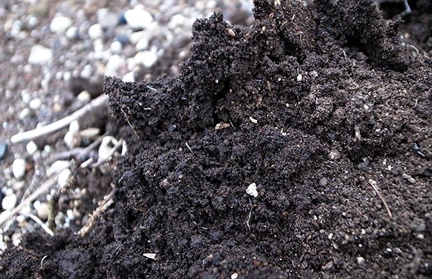 表面の乾燥