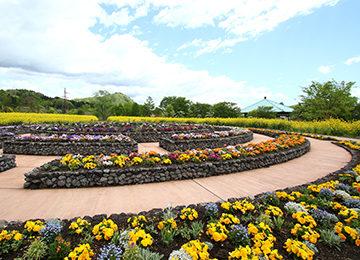 土壌分析と施肥内容の提案(中之条ガーデンズスパイラルガーデン)|Biogold PROFESSIONAL
