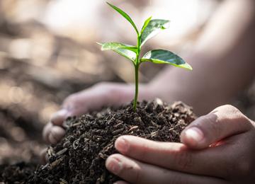 【土壌改良成功のために】ガーデナーのための土壌基礎知識~植物を育てるのがラクになる夢のような土とは~