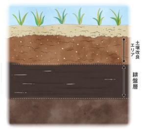 土壌改良成功のために知っておきたい基礎知識その2「排水できない理由」耕盤層(こうばんそう)